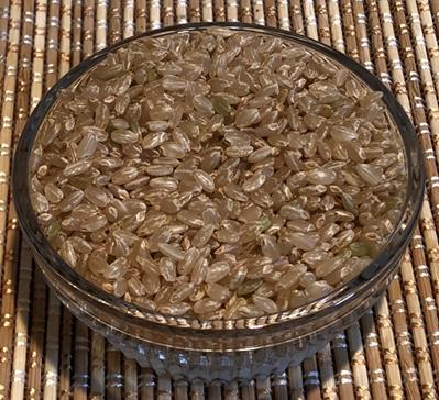 クロックティー素材 籾発芽玄米