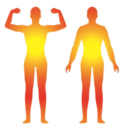足指・足裏は  1、カラダの中で脳が信号を送る、心臓がめぐりを送る一番遠い部位。  脳、心臓から一番遠い部位である足指・足裏に信号が正しく届く、 めぐりが正しく届くことは、健康の大切な1つの目安。  2、直立二足歩行である人間にとって唯一の地面との接点である部位。  直立二足歩行である人間にとって地面との唯一の接点である足指・足裏 でカラダを支え、姿勢バランスが取れることは、健康の大切な1つの目安。  3、地面に直接パワーを伝える唯一の部位。  地面を蹴って、歩く、走ることは、健康の大切な一つの目安。  そして今以上に速く、高く、遠くを目指すアスリートにとって足指・足裏は、 最も重要なトレーニングにおける鍛える部位。   足指を動かして、足指握力(足趾把持力)・足裏アーチ力をつけることは、オナカ力です。
