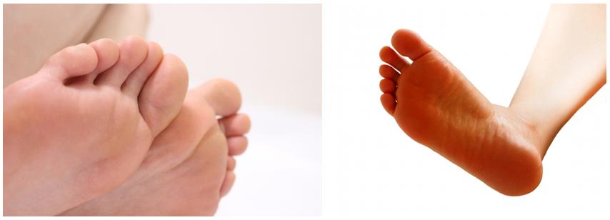 足指握力(足趾把持力)・足裏アーチ力の重要性について
