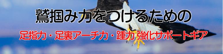 鷲掴み力をつけるための足指力、足裏アーチ力、踵力強化サポートギア ワシーガ