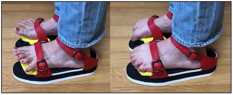 ワシーガトウズは、カカト・甲・つま先で履かず、 足指裏の関節と足首前で履きます。