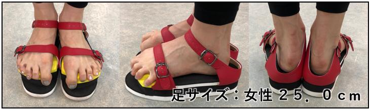 足サイズ別 ワシーガトウズを履いたイメージ