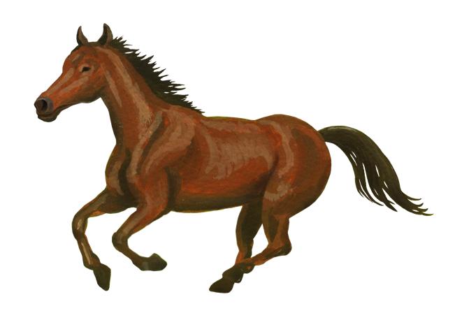 馬と人間の走力比較