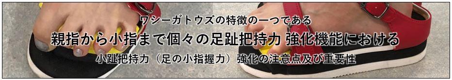 ワシーガトウズの特徴の一つである親指から小指まで個々の足趾把持力 強化機能における小趾把持力(足の小指握力)強化の注意点及び重要性